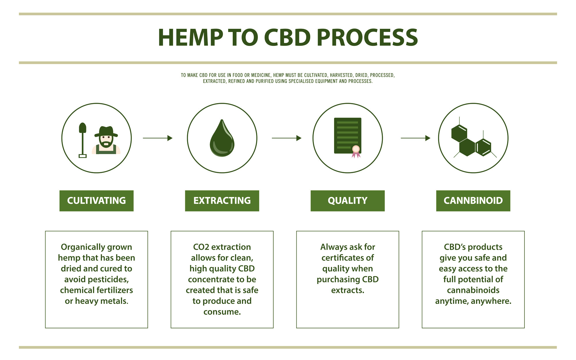 chart illustrating the manufacturing process of hemp to cbd