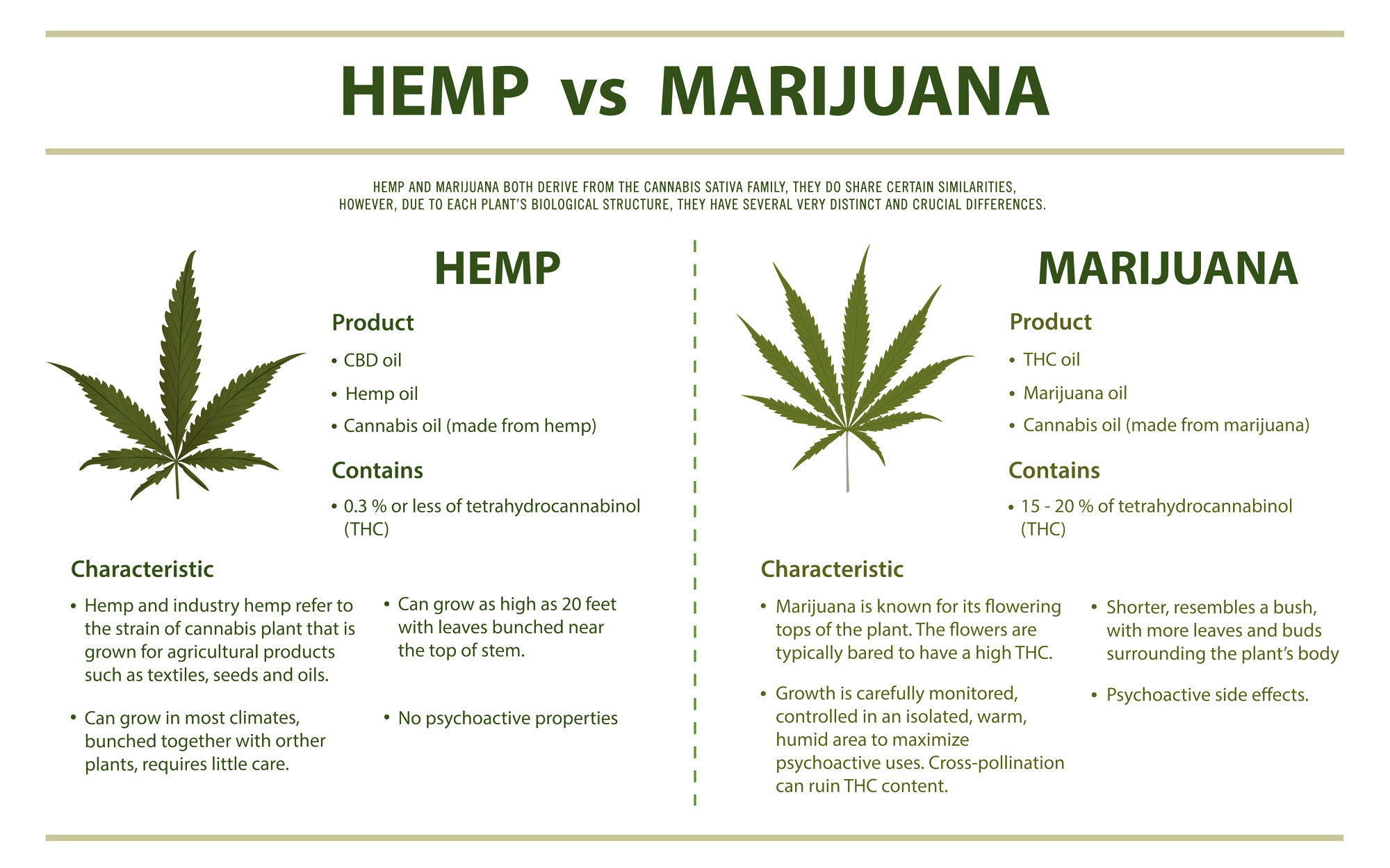 slide illustrating the difference between hemp and marijuana