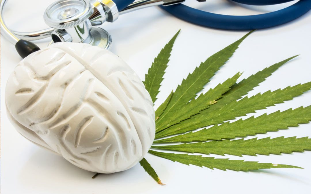 The Endocannabinoid Deficiency Theory Explained